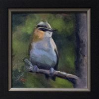 Fly Catcher - small daily oil painting