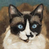 Cat - small daily oil painting
