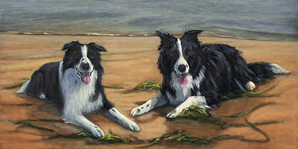 Update 4 Border Collies commission