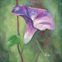 Morning Glory 2 oil by Krista Hasson