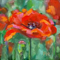 Red Poppy oil painting by Krista Hasson