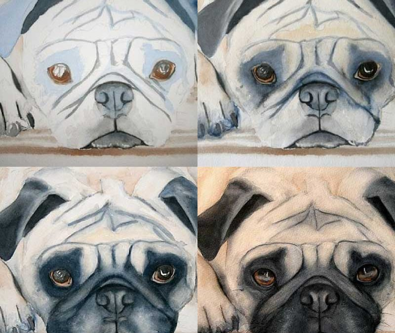 Pug Demo Painted with Only 2 Colors in Watercolor